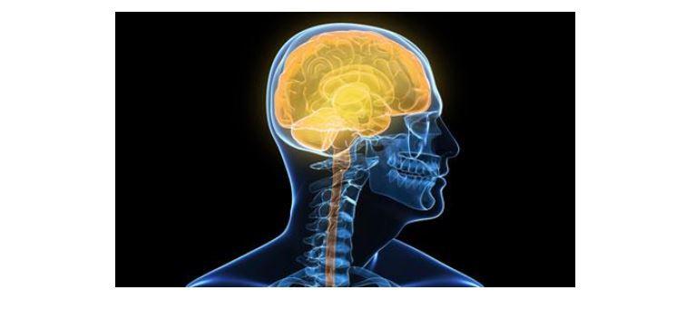Kanceri i trurit